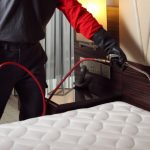 Importance Of Hiring A Professional Bed Bug Exterminator