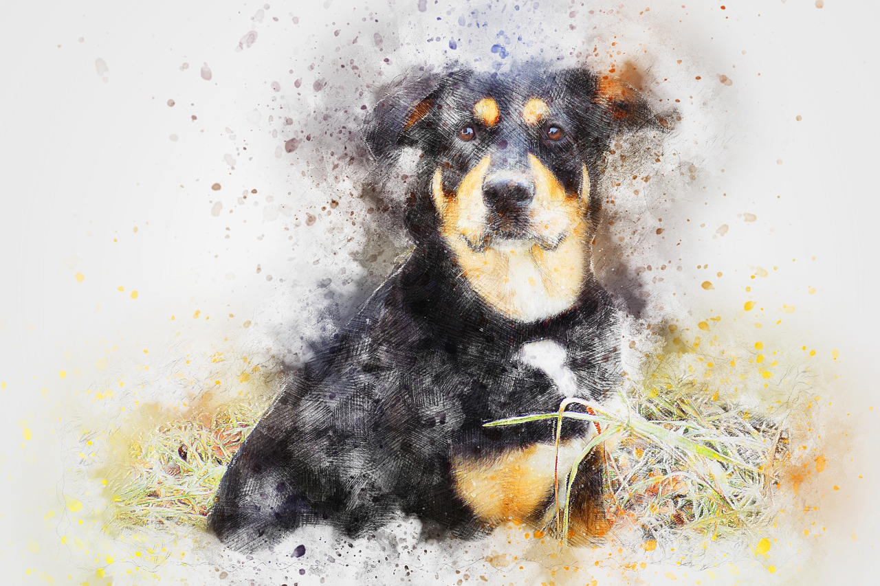 Let's Create Your Pet Paintings At Home